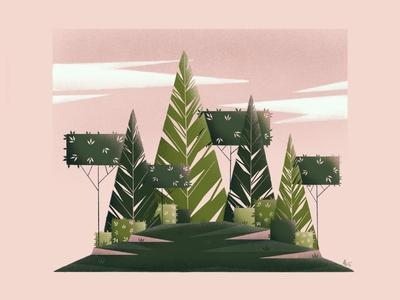 Pink & Pine