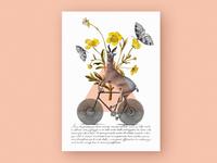 Antelope // Collage poster