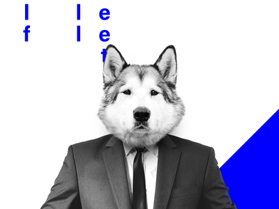 wolf on wallstreet hybrid animal poster minimalistic photomanipulation wolf