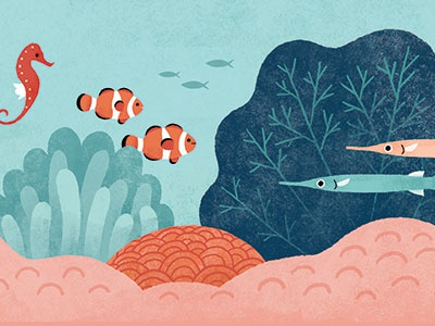 Life in the Coral Reef decor illustration anemone seahorse clownfish ocean sea underwater coral coral reef