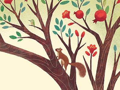 Pomegranate tree hummingbird birds squirrel illustration design ketubah decorative floral tree pomegranate
