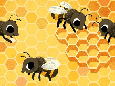 Hello Honeybees honeycomb nature educational books children kidlit childrens books learning insects bugs bees honeybees