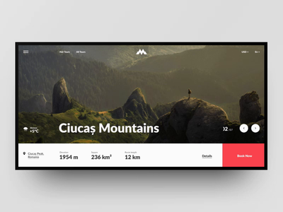 MountainWorld - online travelling booking landing interaction animation interaction travel booking mountain grid site web design design ux ui
