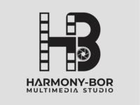 Multimedia Studio Logo