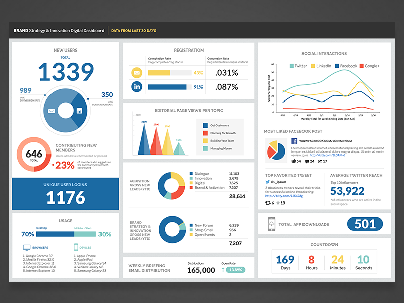 data infographic dashboard by lauren bowman on dribbble