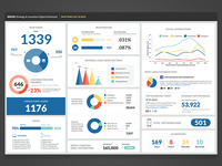 Data Infographic Dashboard