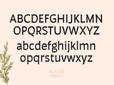 Auster Regular type design typography font