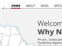 Why Not Travel Website