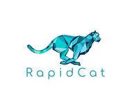 RapidCat Logo Proposal