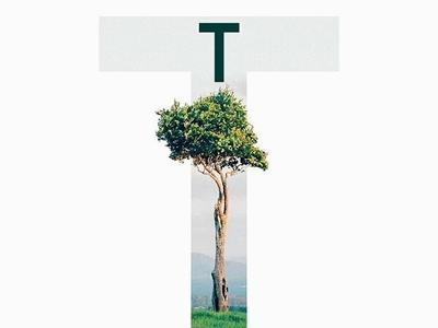 """T"" Uppercase from the upcoming typeface ""ELEGANTPRO"""