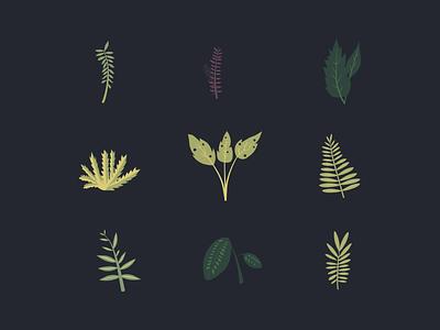 Leafage nature natural design illustration