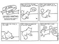 A Cat's Guide to: Spider Hunting