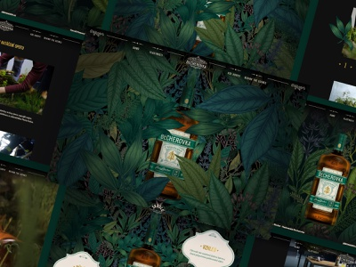 Becherovka Unfiltred figma ux prague czech alcohol beverage web webdesign ui