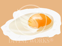 Free Vector Fried Egg Illustration