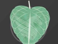 Free Adobe Illustrator Leaf Vector Illustration
