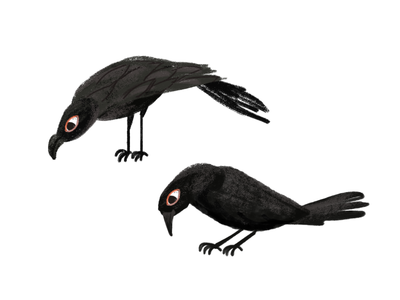 Bird Charchterdesign animal bird illustration animation cutout