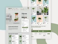 Plantsome - Houseplants Webshop
