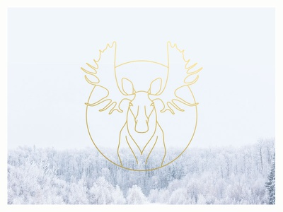 Winter Moose moose antlers line drawing gold white grey bright
