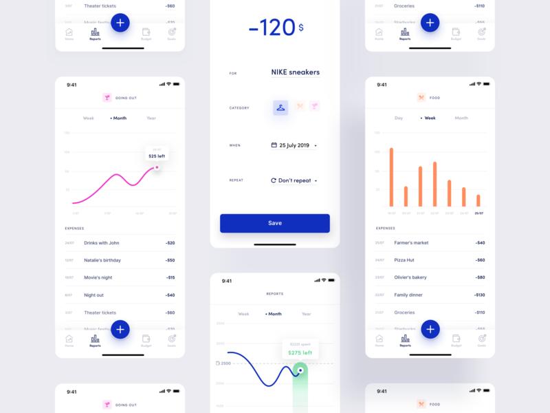 Budget App 2 money management personal finance data visulization data budget fintech finance ux ui typography print mobile illustration branding animation product design app