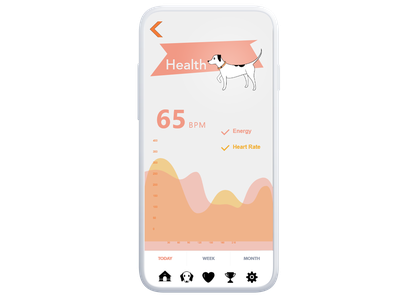 Dog E Data, UI Design adobexd brand branding creative jam adobe infographic animal pet bpm interactive mobile design ux ui data app health dog