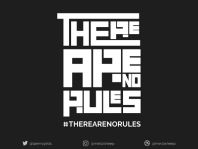 There are no rules !