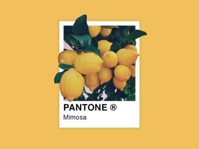 My favorite color of Pantone. art graphicdesigner flat minimal manipulation illustration design