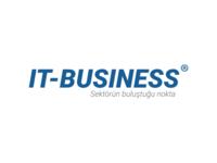 IT-BUSINESS Logo Design