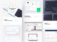 Dashboards: Showcase 2019 netguru teaser app dashboard app interface grid website behance case study web design data ux uiux ui dashboard ui dashboard