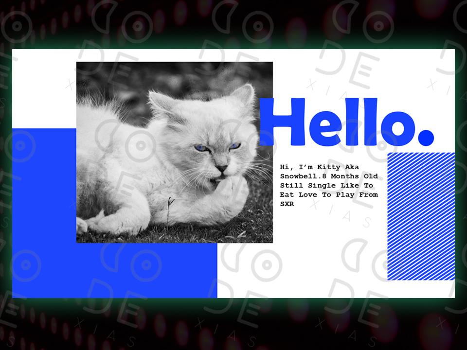KITTY WEB CONCEPT photoshop character illustration identity animation ios lettering type flat typography app website web branding ui ux design