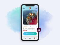 Aqua app Xd