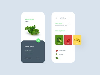 Fruits and Vegetables App Concept !