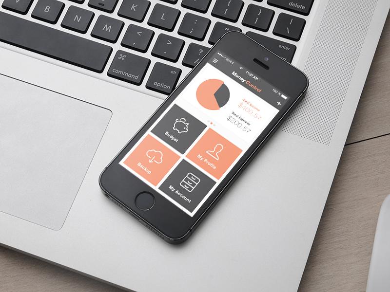 Money Control App for iOS