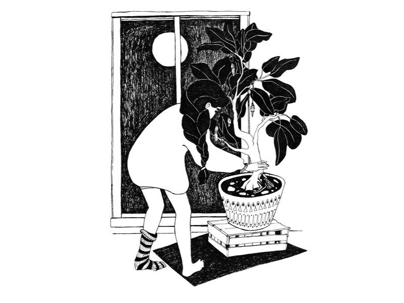 The Fairy Witch girl character cute art cozy gardening moon window home plant fairy witch fineliner character black and white drawing challenge hand drawing drawing illustration
