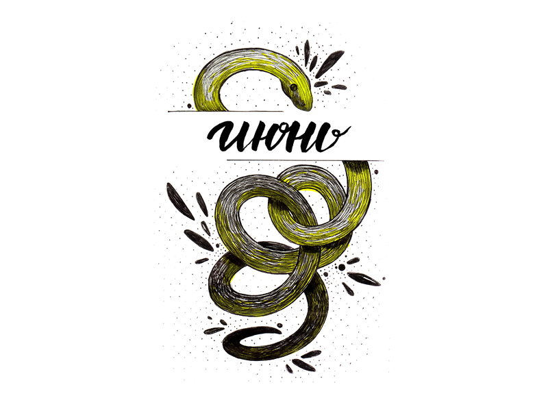 The June Snake month lettering июнь june yellow snake yellow hand drawing drawing illustration