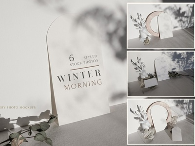 Fall & Winter Photo Mockup BUNDLE autumn templates minimalist floral botanical shadow mockup set template design branding mockups mock-up mockup falling winter mockup photo mockups photo mockup photo winter fall