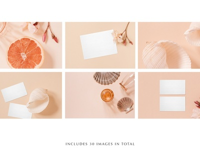 Coral Stock Photo & Mockup Bundle