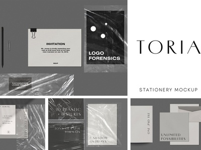 Toria Stationery Mockup Scene Kit