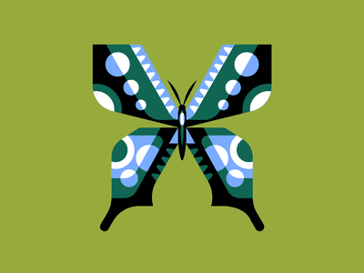 🦋 nature butterfly