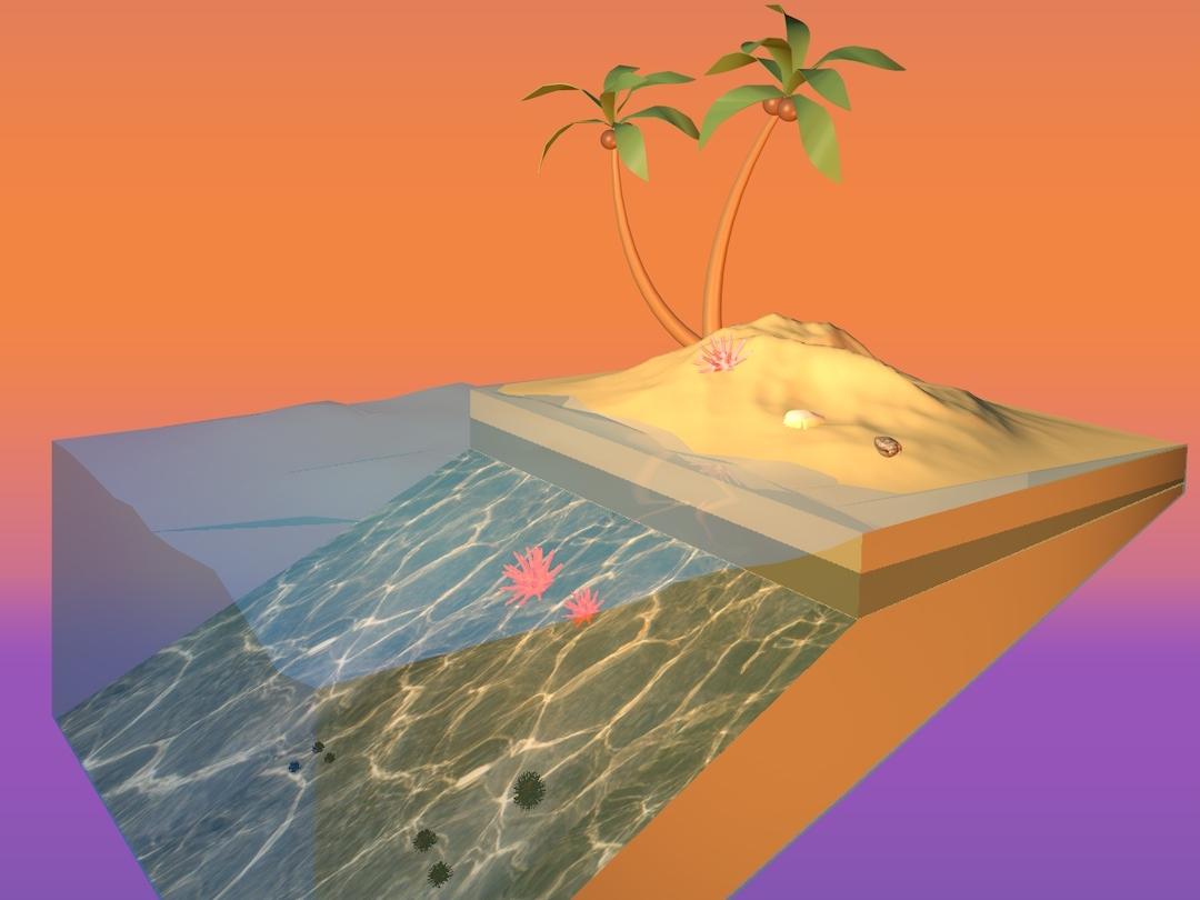 summer palmtrees island travel illustration floating design cinema 4d
