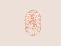 Ninsare logo