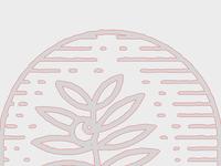 Ninsare - Logo focus