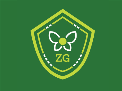Zelda Guide zelda zeldaguide zelda guide brand logocore identity logo design branding
