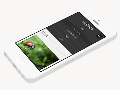 Magnify Shot responsive mobile theme user interface