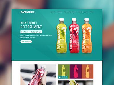 Barracudos Website Design sketchapp website