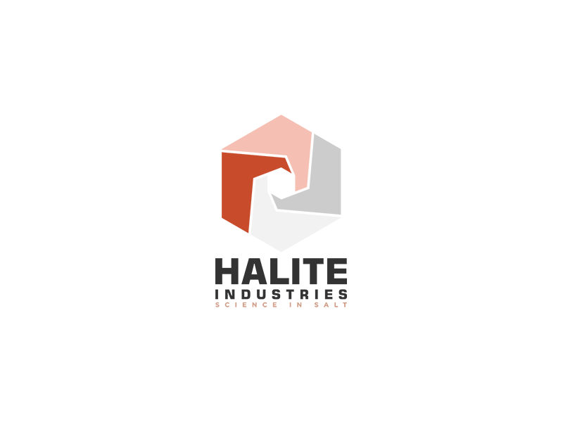Halite Industries Logo Design modern design typography single unique unique logo business logo design logopreneur logo