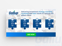 Gallup Banner Design