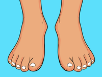 Foot - Part Of Body Story Illustration