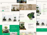 Green Factory - Website redesign