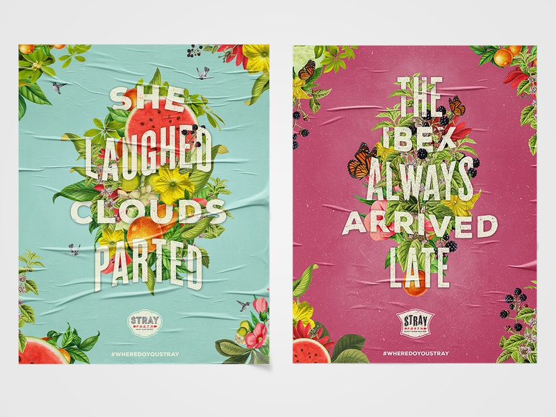 Posters for Stray Forth Craft Hard Seltzer illustration art direction typography type graphic design poster design posters planet propaganda identity design collage branding