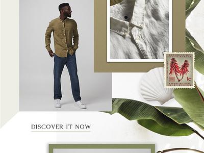 #1 newsletter leaf branding summer stamp minimalism graphic  design marketing email design email marketing email newsletter